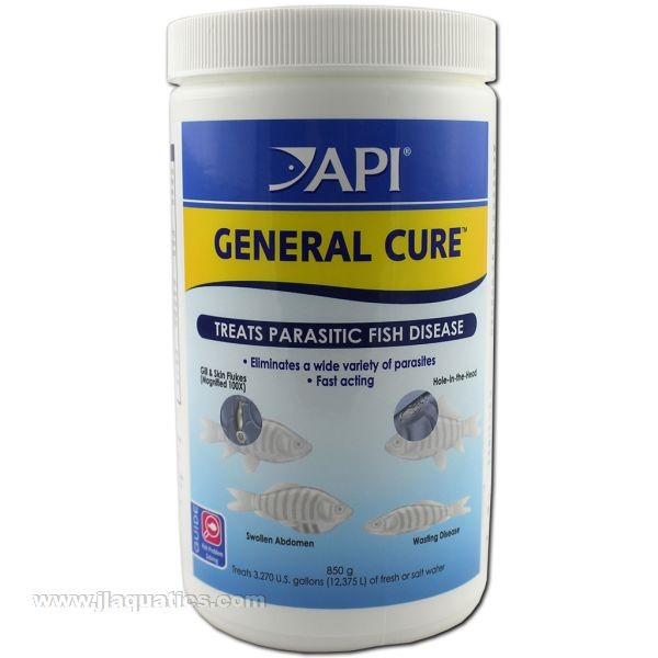 API General Cure, Treatment for Intestinal Parasites in Fish